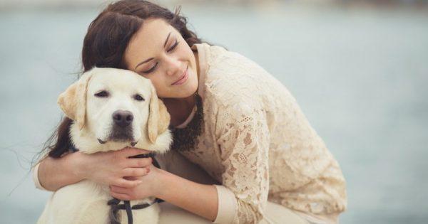 Cómo cuidar a tu mascota durante el invierno