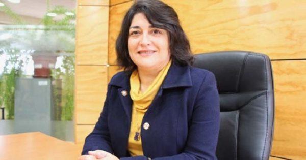 Columna de Opinión sobre resultados evaluación 2020 de la Agencia de Calidad en la educación chilena