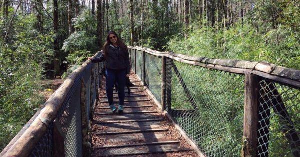 Egresada de Relaciones Públicas UVM da a conocer su trabajo en la Reserva Biológica Huilo-Huilo