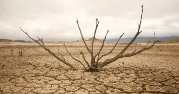 Columna: «Sequía e impacto en el ingreso familiar»