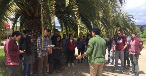 Con visitas a Viñas de Casablanca finaliza curso de Enoturismo UVM