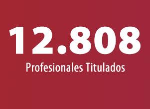 12.808 Profesionales Titulados