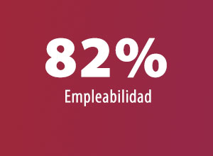 82% Empleabilidad