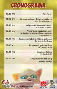 cronograma gatofest