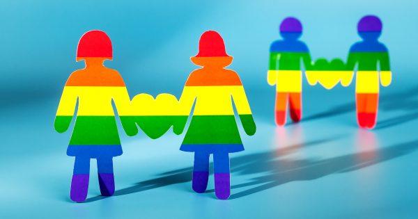 ¿Existe una debida protección a las familias homoparentales?