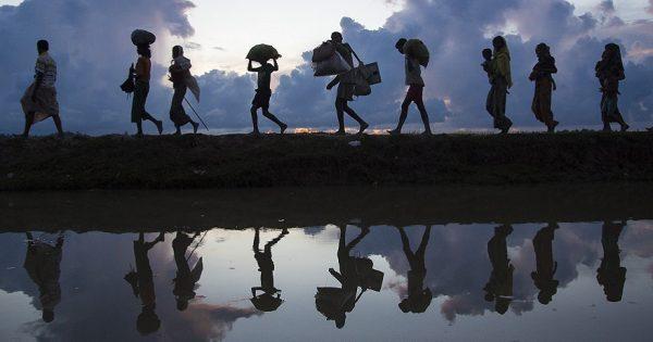 Migraciones, Derechos Humanos y Gestión Social
